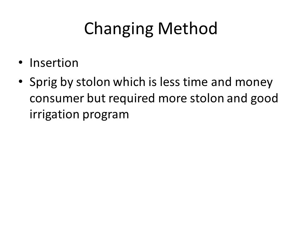 Changing Method Insertion Sprig by stolon which is less time and money consumer but required more stolon and good irrigation program
