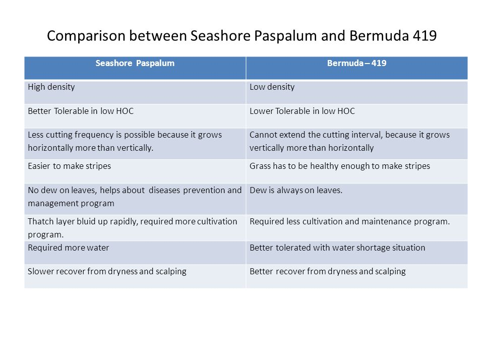 Comparison between Seashore Paspalum and Bermuda 419 Seashore PaspalumBermuda – 419 High densityLow density Better Tolerable in low HOCLower Tolerable in low HOC Less cutting frequency is possible because it grows horizontally more than vertically.