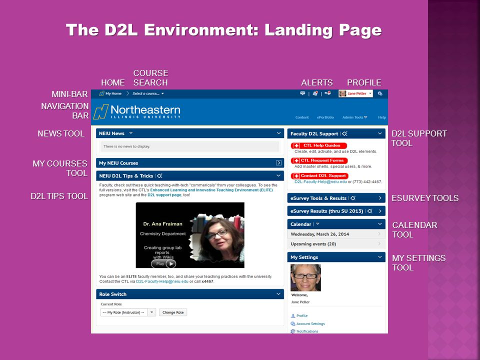 The D2L Environment: Landing Page MINI-BAR NAVIGATIONBAR NEWS TOOL MY COURSES TOOL ALERTSPROFILE CALENDAR TOOL MY SETTINGS TOOL HOME COURSE SEARCH D2L TIPS TOOL D2L SUPPORT TOOL ESURVEY TOOLS