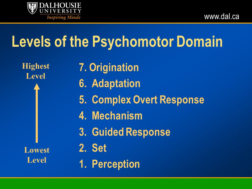 www.dal.ca Levels of the Psychomotor Domain 7. Origination 6.