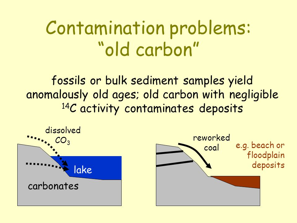 Contamination problems: old carbon lake carbonates dissolved CO 3 fossils or bulk sediment samples yield anomalously old ages; old carbon with negligible 14 C activity contaminates deposits reworked coal e.g.