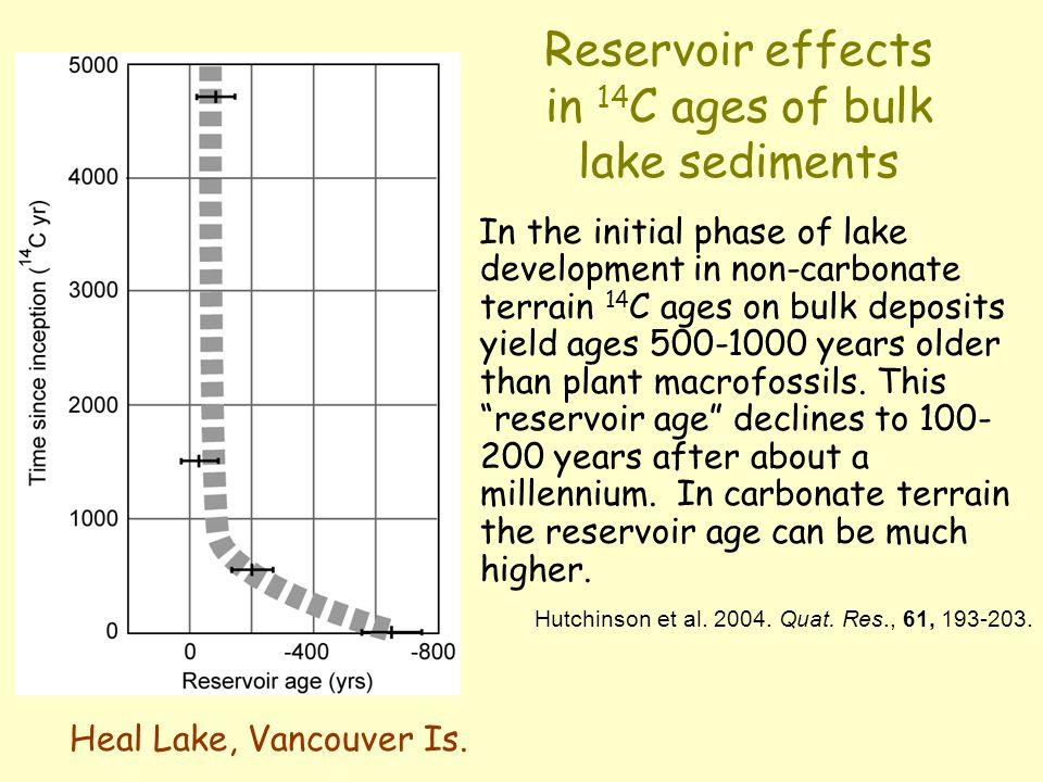 Reservoir effects in 14 C ages of bulk lake sediments In the initial phase of lake development in non-carbonate terrain 14 C ages on bulk deposits yield ages 500-1000 years older than plant macrofossils.
