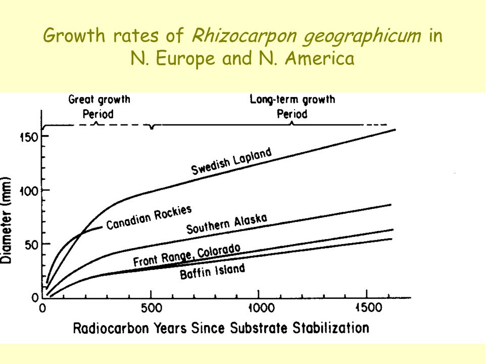 Growth rates of Rhizocarpon geographicum in N. Europe and N. America