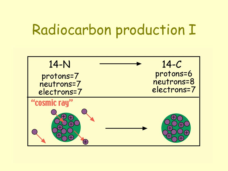 Radiocarbon production I