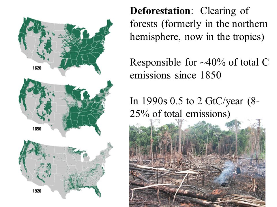 Deforestation: Clearing of forests (formerly in the northern hemisphere, now in the tropics) Responsible for ~40% of total C emissions since 1850 In 1990s 0.5 to 2 GtC/year (8- 25% of total emissions)