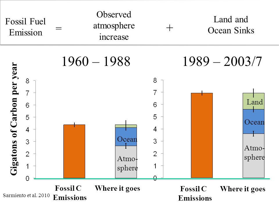 Fossil C Where it goes Emissions Gigatons of Carbon per year Fossil C Where it goes Emissions Atmo- sphere Ocean Atmo- sphere Ocean Land 1989 – 2003/71960 – 1988 Fossil Fuel Emission Observed atmosphere increase Land and Ocean Sinks = + Sarmiento et al.