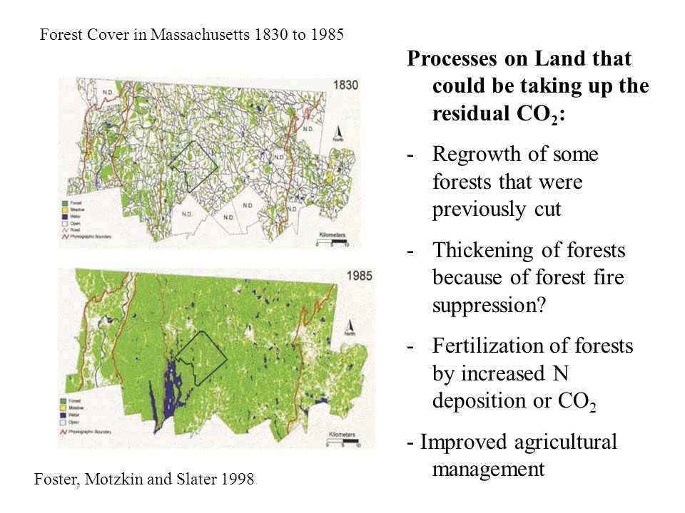 Foster, Motzkin and Slater 1998 Forest Cover in Massachusetts 1830 to 1985 Processes on Land that could be taking up the residual CO 2 : -Regrowth of some forests that were previously cut -Thickening of forests because of forest fire suppression.