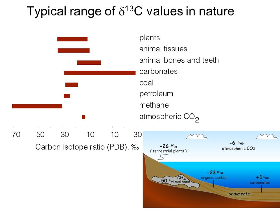Typical range of 13 C values in nature