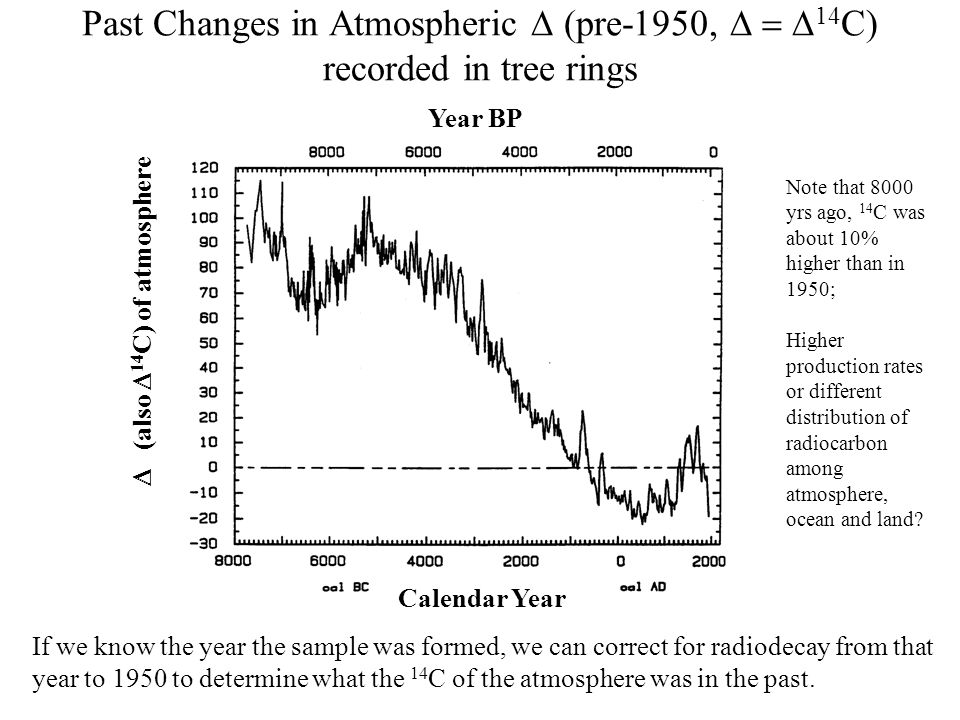 Past Changes in Atmospheric pre-1950 14 C) recorded in tree rings Year BP (also 14 C) of atmosphere Calendar Year If we know the year the sample was formed, we can correct for radiodecay from that year to 1950 to determine what the 14 C of the atmosphere was in the past.