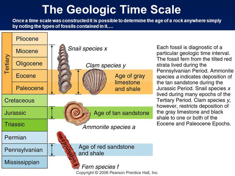 The Geologic Time Scale Once a time scale was constructed it is possible to determine the age of a rock anywhere simply by noting the types of fossils contained in it….