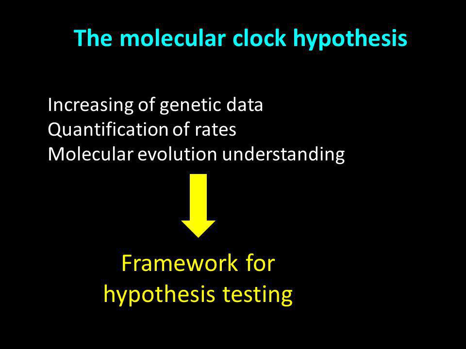 The molecular clock hypothesis Increasing of genetic data Quantification of rates Molecular evolution understanding Constant Framework for hypothesis testing