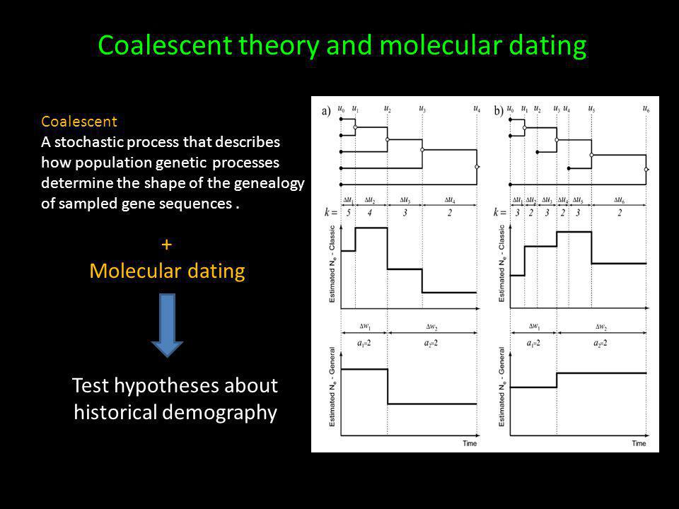 Coalescent theory and molecular dating Coalescent A stochastic process that describes how population genetic processes determine the shape of the genealogy of sampled gene sequences.