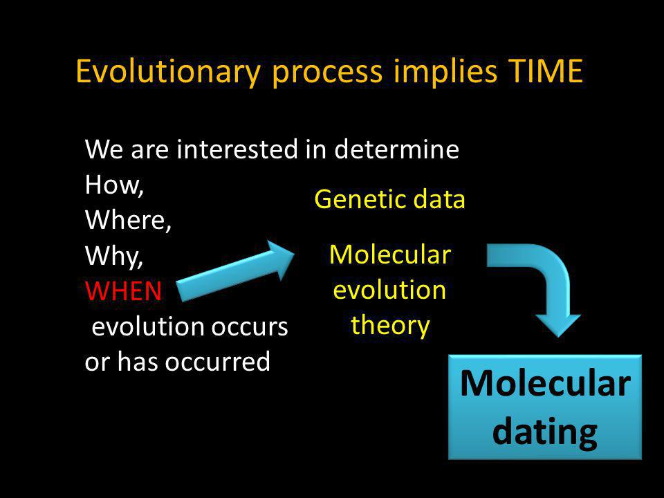 Evolutionary process implies TIME We are interested in determine How, Where, Why, WHEN evolution occurs or has occurred Genetic data Molecular evolution theory Molecular dating