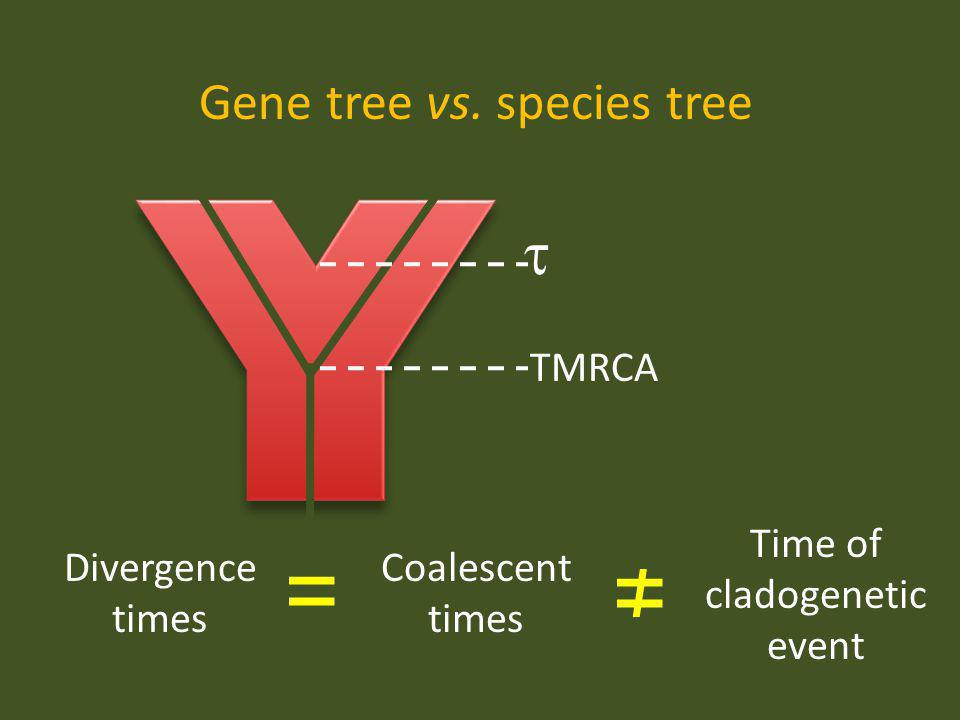 Gene tree vs. species tree Coalescent times Divergence times Time of cladogenetic event = TMRCA