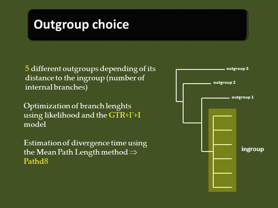 5 different outgroups depending of its distance to the ingroup (number of internal branches) Optimization of branch lenghts using likelihood and the GTR+ +I model Estimation of divergence time using the Mean Path Length method Pathd8 ingroup outgroup 1 outgroup 2 outgroup 3 Outgroup choice