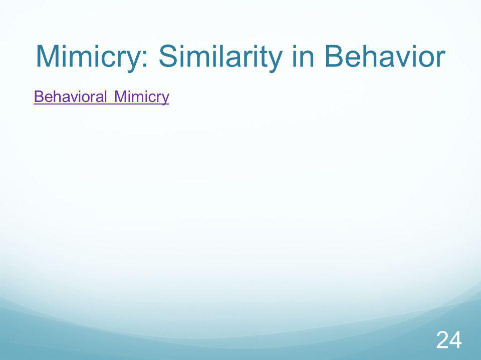 Mimicry: Similarity in Behavior Behavioral Mimicry 24