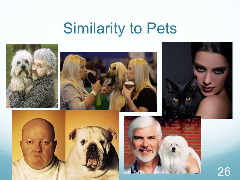 Similarity to Pets 26