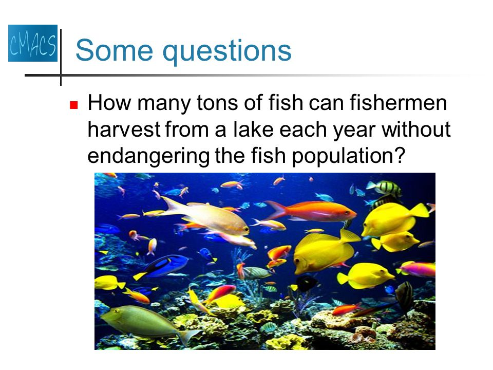 Some questions How many tons of fish can fishermen harvest from a lake each year without endangering the fish population