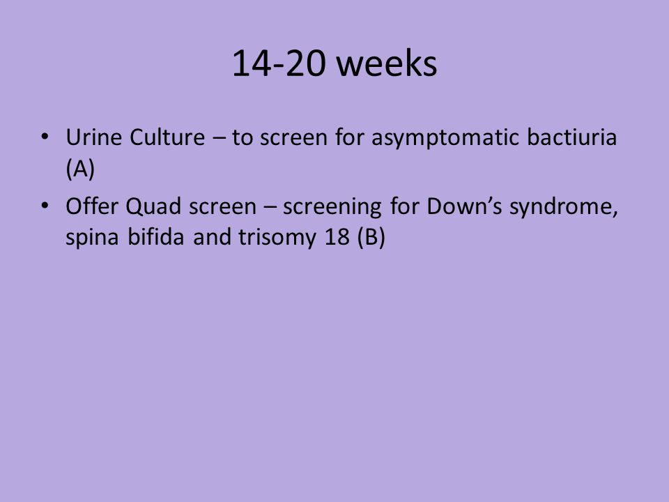 14-20 weeks Urine Culture – to screen for asymptomatic bactiuria (A) Offer Quad screen – screening for Downs syndrome, spina bifida and trisomy 18 (B)