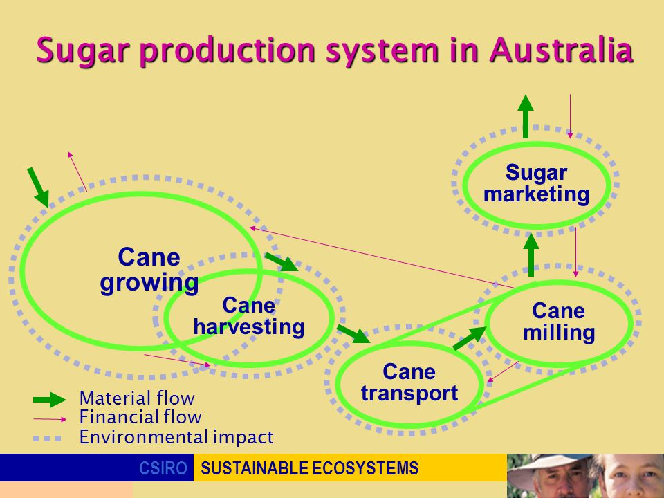 CSIROSUSTAINABLE ECOSYSTEMS Sugar production system in Australia Sugar marketing Environmental impact Cane harvesting Cane milling Cane transport Material flow Financial flow Cane growing Sugar marketing