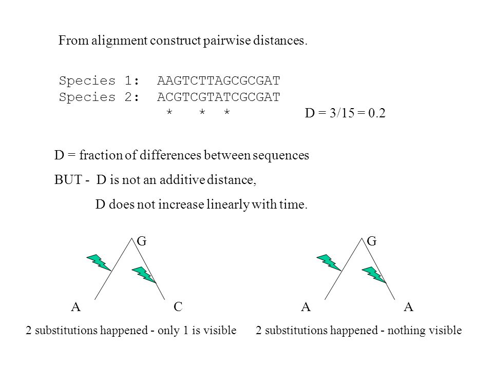 From alignment construct pairwise distances.