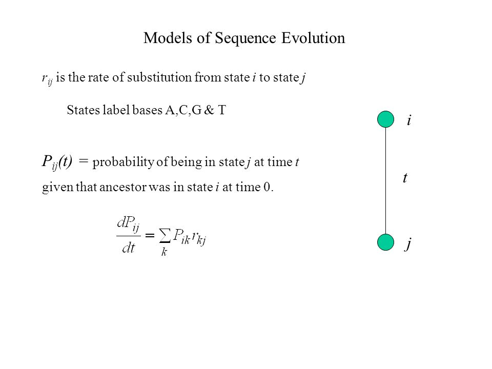 Models of Sequence Evolution P ij (t) = probability of being in state j at time t given that ancestor was in state i at time 0.