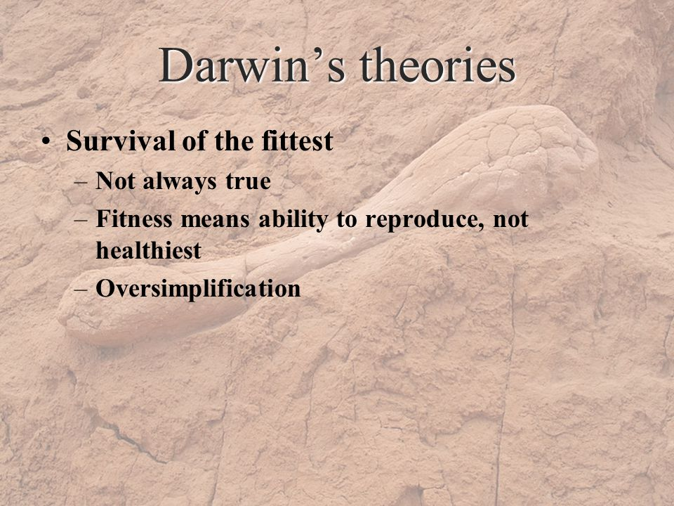 Darwins theories Survival of the fittest –Not always true –Fitness means ability to reproduce, not healthiest –Oversimplification