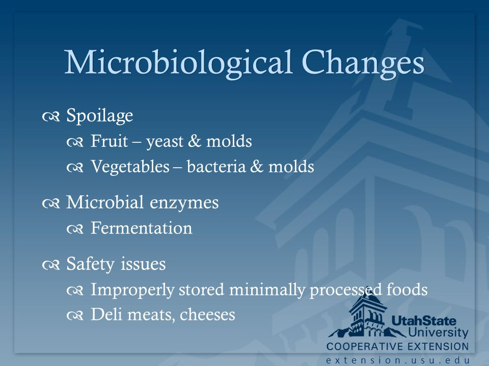 extension.usu.edu Microbiological ChangesMicrobiological Changes Spoilage Fruit – yeast & molds Vegetables – bacteria & molds Microbial enzymes Fermentation Safety issues Improperly stored minimally processed foods Deli meats, cheeses