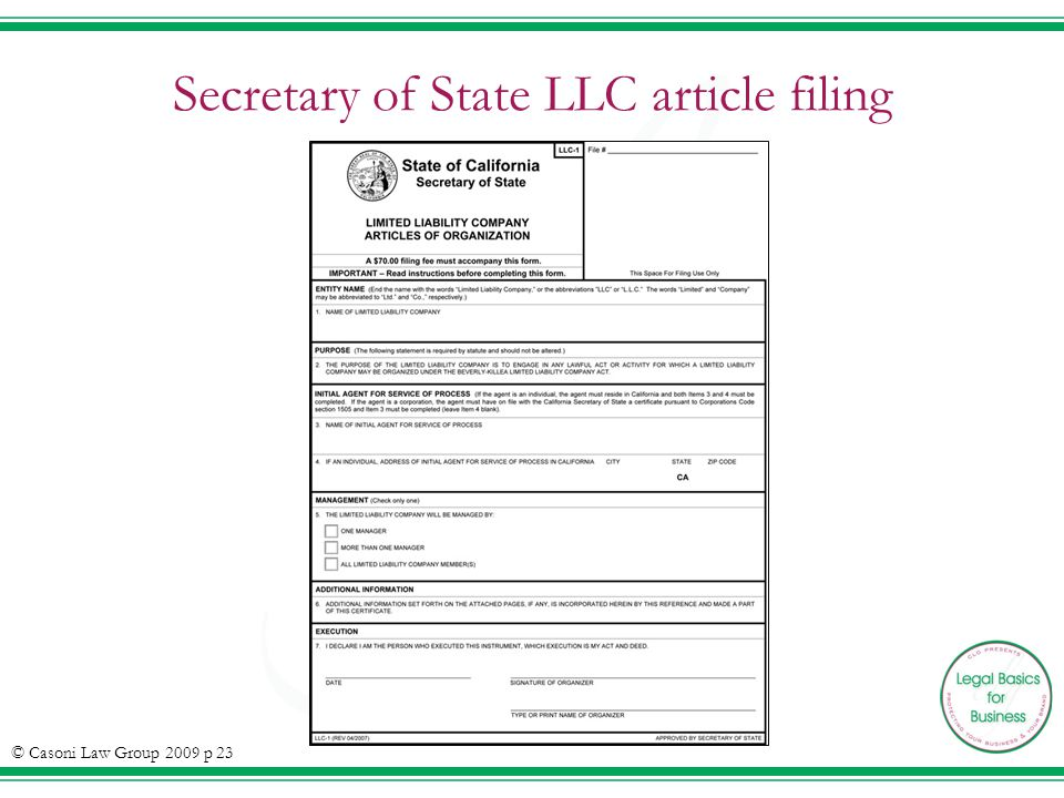 Secretary of State LLC article filing © Casoni Law Group 2009 p 23