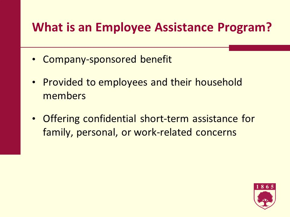 What is an Employee Assistance Program.