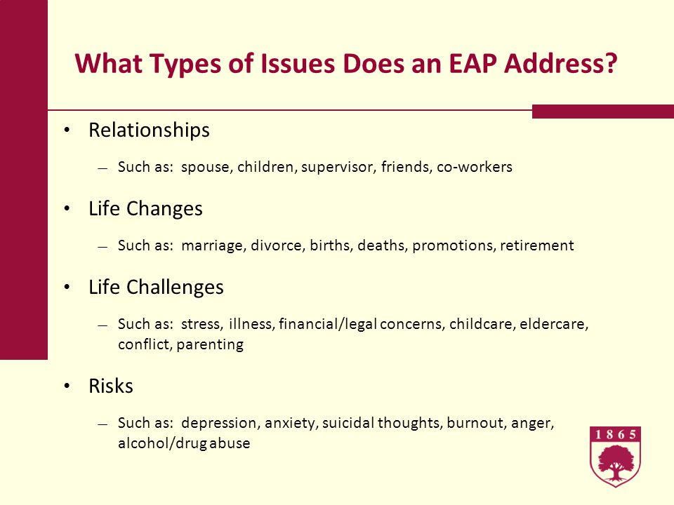 What Types of Issues Does an EAP Address.