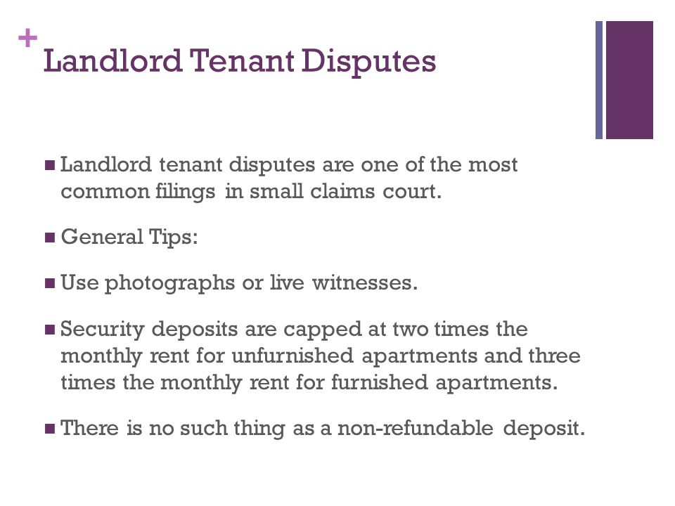 + Landlord Tenant Disputes Landlord tenant disputes are one of the most common filings in small claims court.