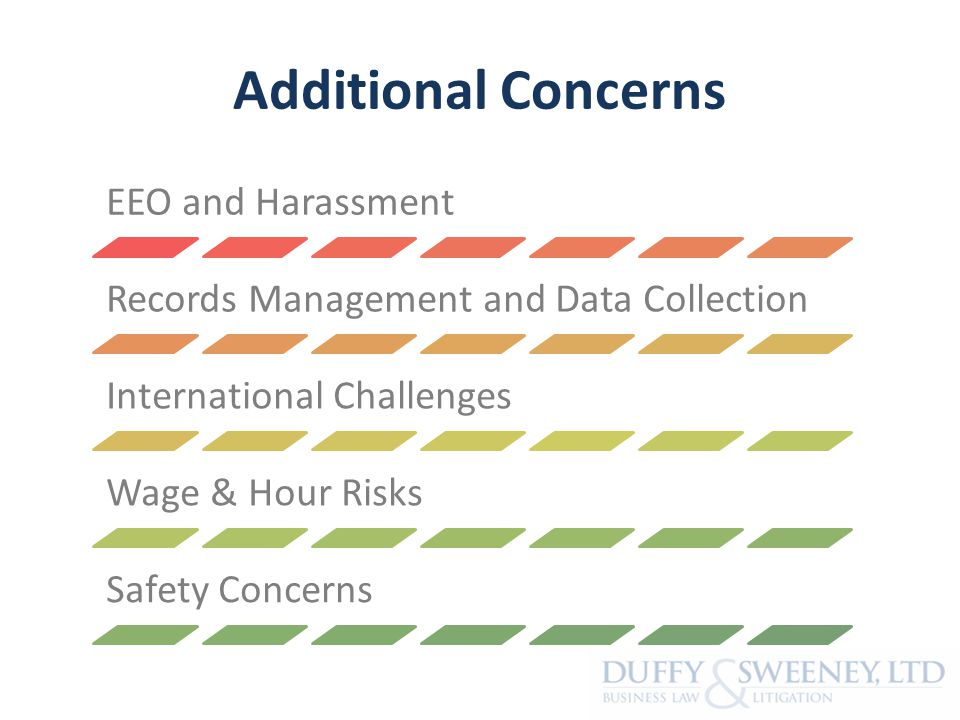 Additional Concerns EEO and Harassment Records Management and Data Collection International Challenges Wage & Hour Risks Safety Concerns