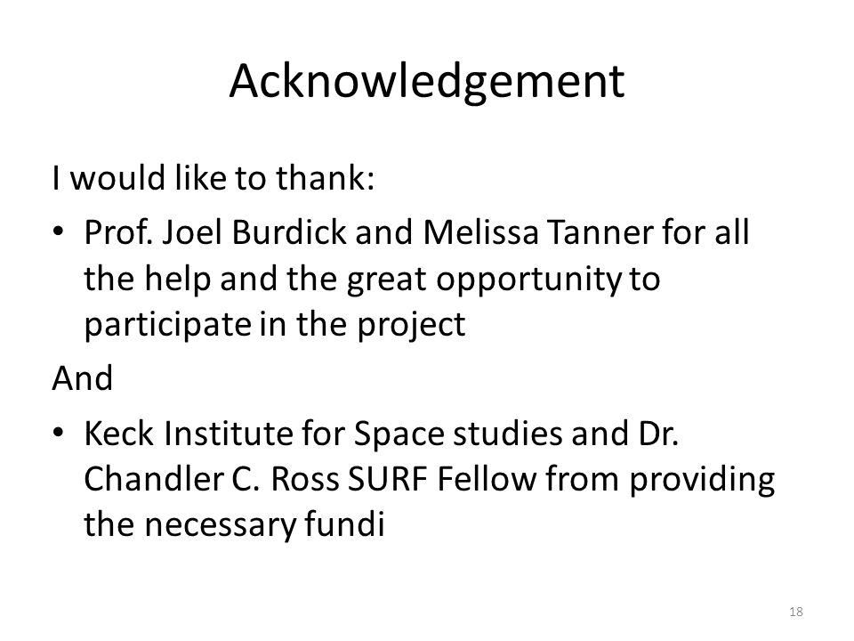 Acknowledgement I would like to thank: Prof.