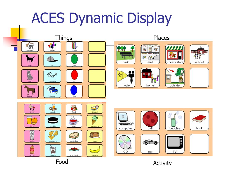 ACES Dynamic Display ThingsPlaces Food Activity