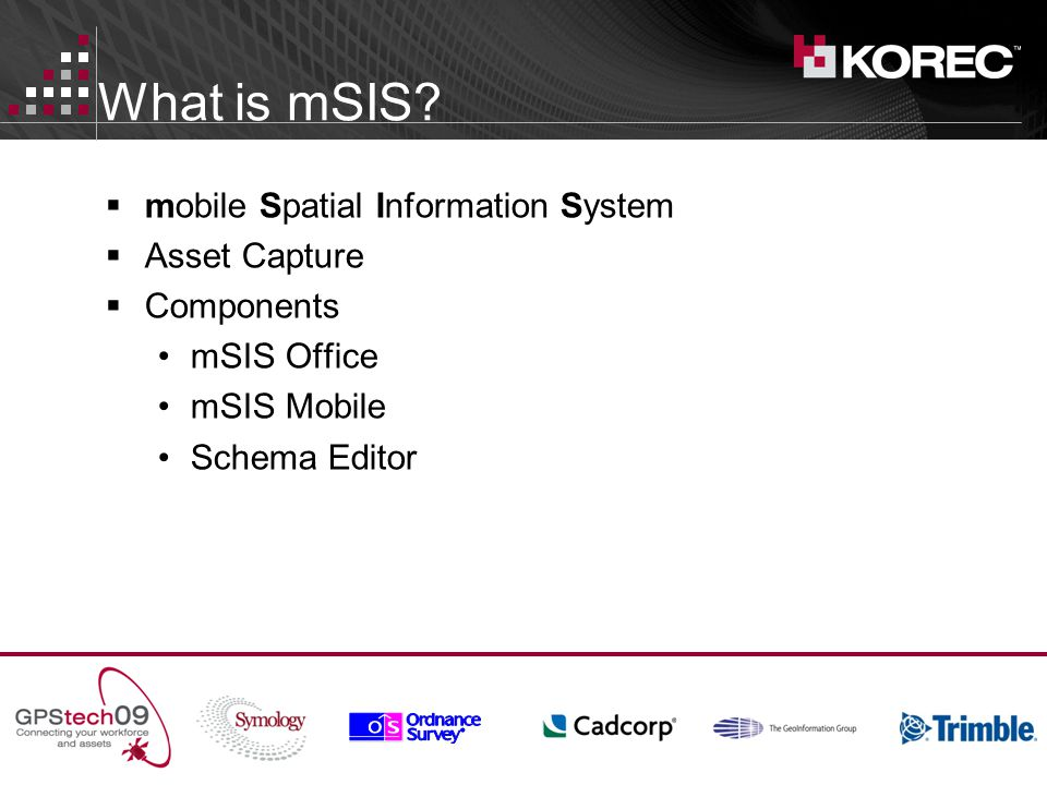 What is mSIS.
