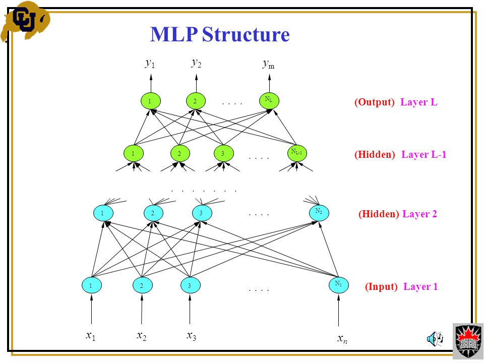 MLP Structure (Output) Layer L (Hidden) Layer L-1 12 NLNL N L-1 321...........