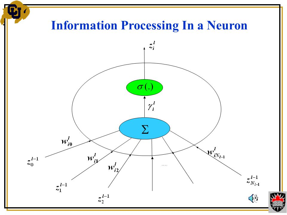 Information Processing In a Neuron (.) ….