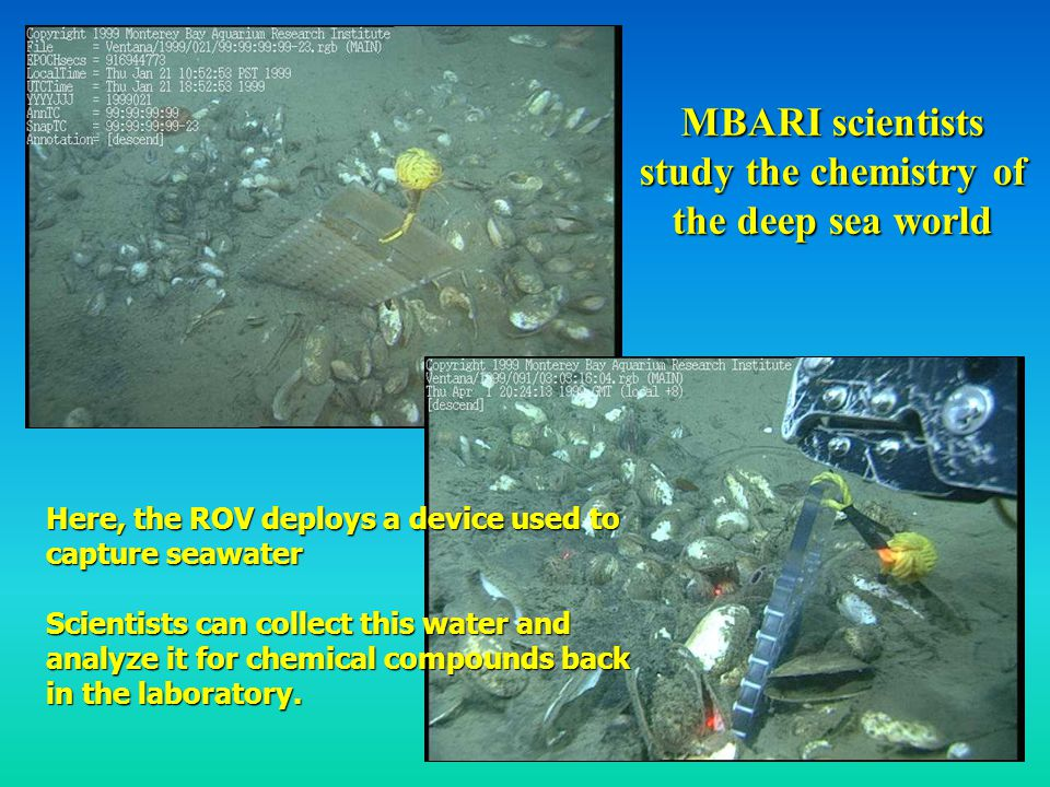 MBARI scientists study the chemistry of the deep sea world Here, the ROV deploys a device used to capture seawater Scientists can collect this water and analyze it for chemical compounds back in the laboratory.