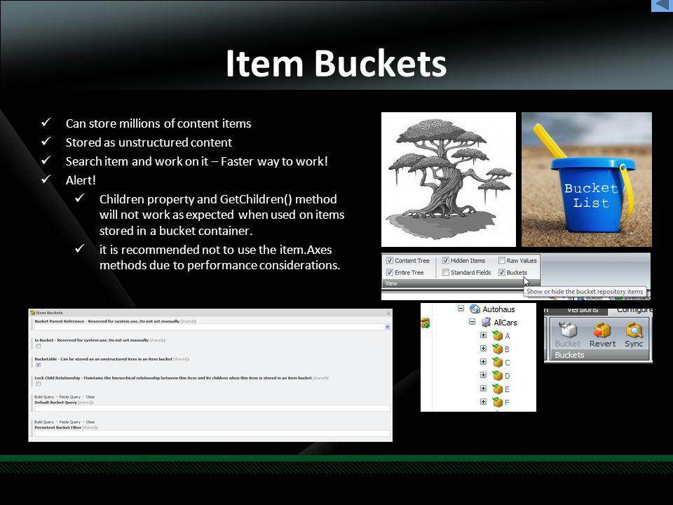 Item Buckets Can store millions of content items Stored as unstructured content Search item and work on it – Faster way to work.