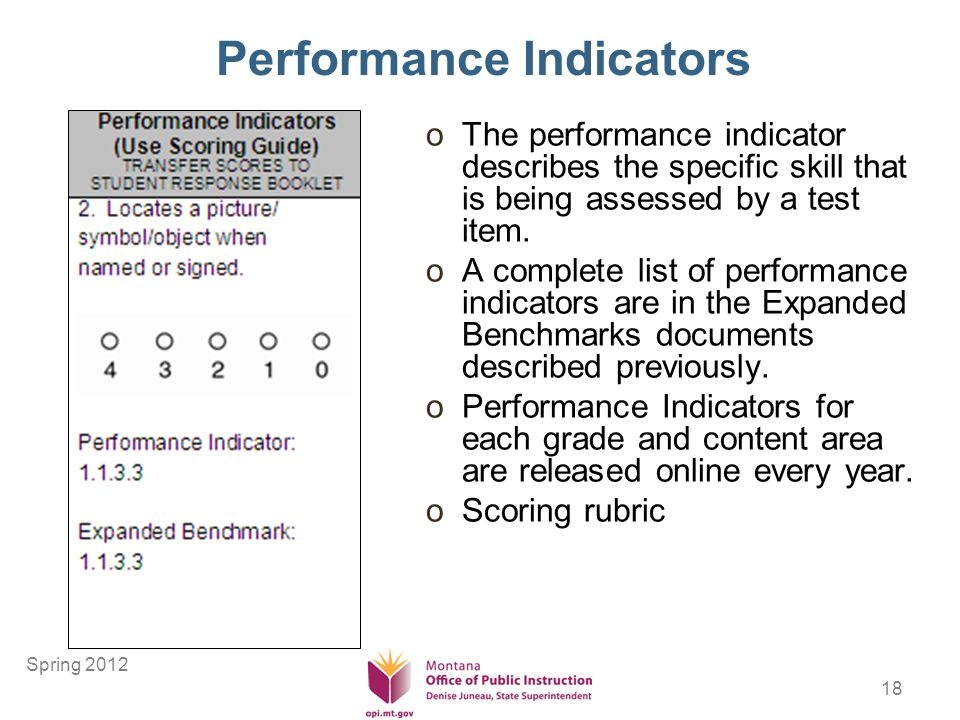 18 Performance Indicators oThe performance indicator describes the specific skill that is being assessed by a test item.