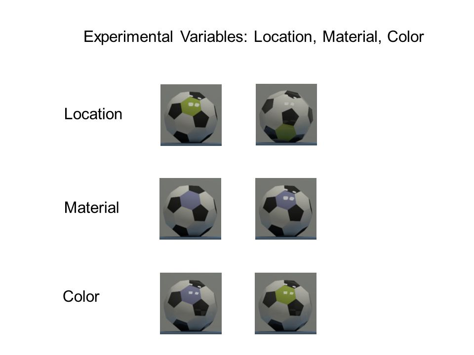 Experimental Variables: Location, Material, Color Material Color Location