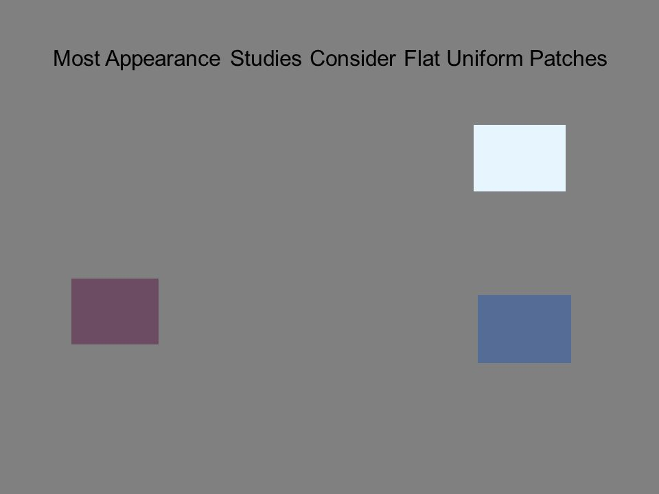 Most Appearance Studies Consider Flat Uniform Patches