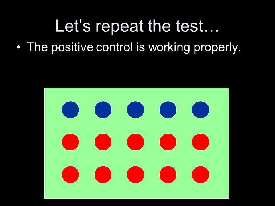 Lets repeat the test… The positive control is working properly.