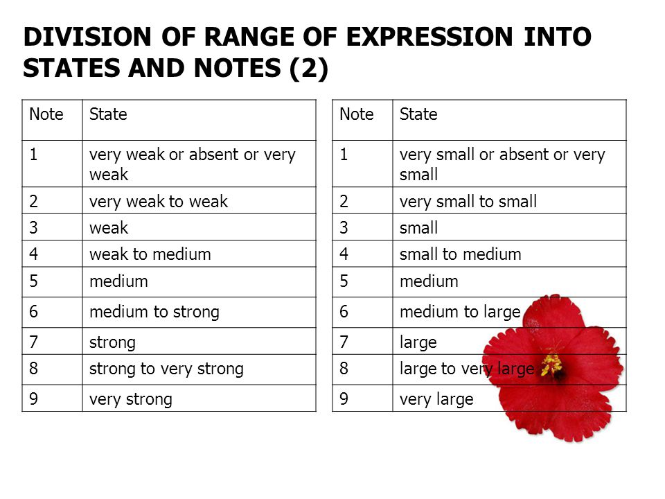 DIVISION OF RANGE OF EXPRESSION INTO STATES AND NOTES (2) NoteState 1very weak or absent or very weak 2very weak to weak 3weak 4weak to medium 5medium 6medium to strong 7strong 8strong to very strong 9very strong NoteState 1very small or absent or very small 2very small to small 3small 4small to medium 5medium 6medium to large 7large 8large to very large 9very large
