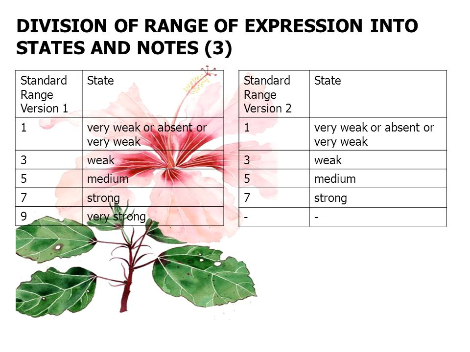 DIVISION OF RANGE OF EXPRESSION INTO STATES AND NOTES (3) Standard Range Version 1 State 1very weak or absent or very weak 3weak 5medium 7strong 9very strong Standard Range Version 2 State 1very weak or absent or very weak 3weak 5medium 7strong --