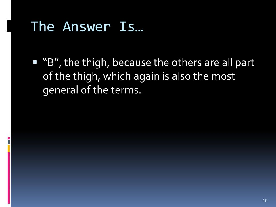 The Answer Is… B, the thigh, because the others are all part of the thigh, which again is also the most general of the terms.