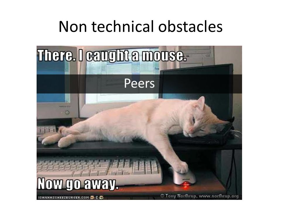 Non technical obstacles Peers