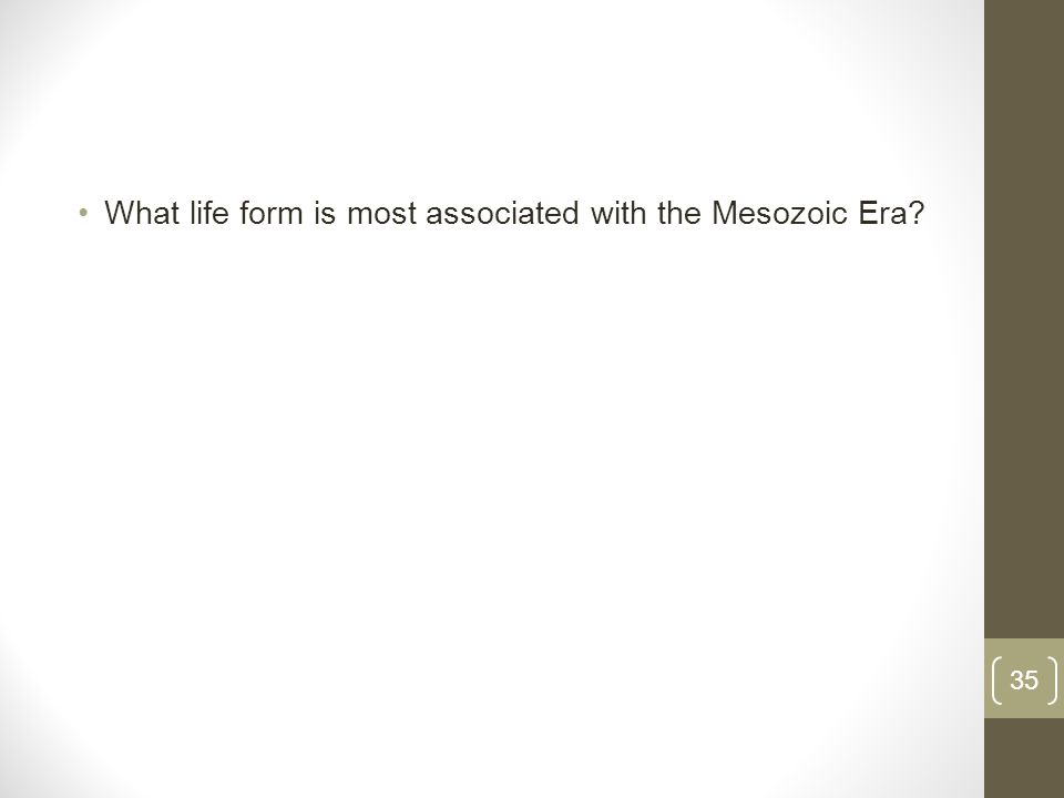 What life form is most associated with the Mesozoic Era 35