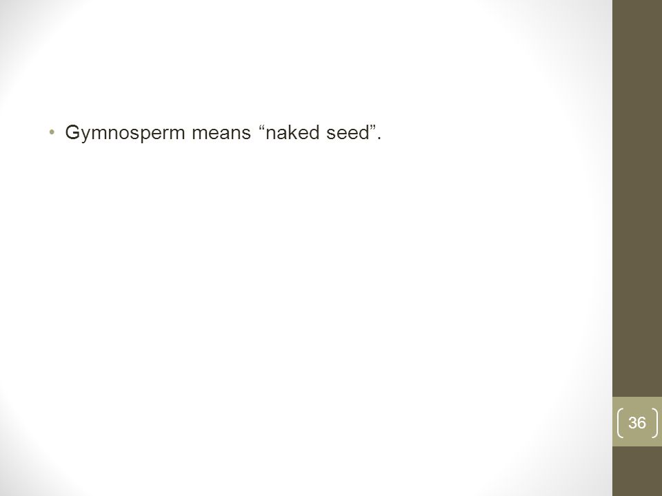 Gymnosperm means naked seed. 36